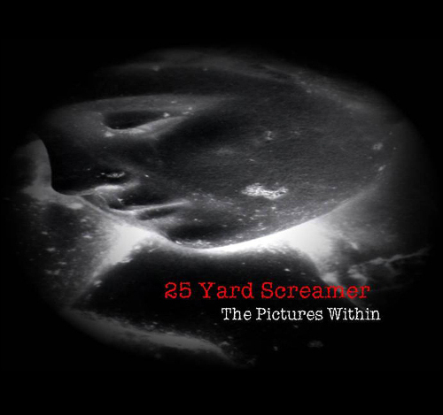 25 Yard Screamer - The Pictures Within